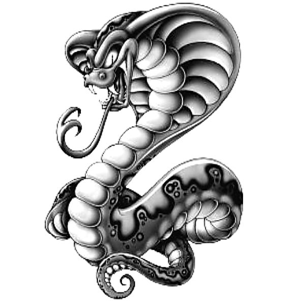 Wzór Tatuażu Wąż Monika Wypożyczalnia Sprzętu